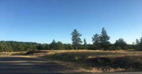 Lot 245 Block 4 GOZZER RANCH GOLF and LAKE CLUB I Harrison, ID 83833